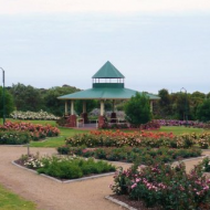 Mornington Botanical Rose Gardens